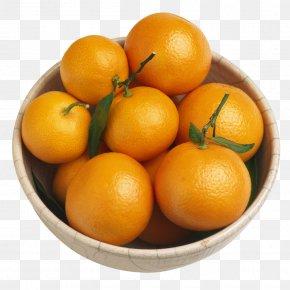 Orange - Bitter Orange Tangerine Mandarin Orange Fruit PNG