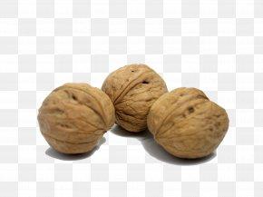 Nutrition Walnut - English Walnut Eating Nutrition PNG