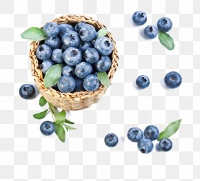 A Basket Of Blueberries - Blueberry Pie Organic Food Bilberry PNG