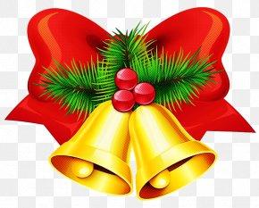 Holly Christmas - Christmas Decoration PNG