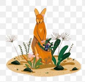 Cartoon Foraging Kangaroo - Cartoon Designer Illustration PNG