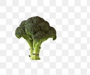 Standing Broccoli - Chinese Broccoli Cauliflower Vegetable Potato PNG
