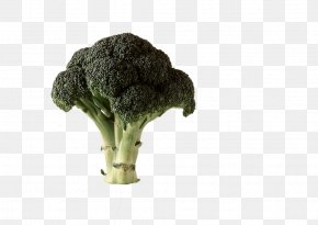Broccoli Vegetables - Chinese Broccoli Cauliflower Cabbage Vegetable PNG