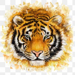 Tiger - Bengal Tiger Felidae Painting Illustration PNG