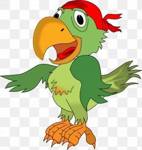 Parrot - Pirate Parrot Piracy Clip Art PNG