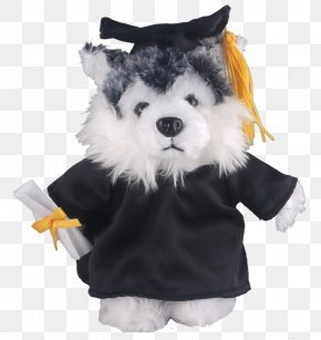 Graduation Gown - Stuffed Animals & Cuddly Toys Dog Graduation Ceremony Academic Dress T-shirt PNG