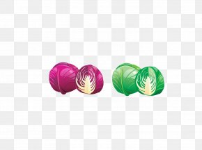 Purple And Green Onion - Red Cabbage Vegetable Food Onion PNG