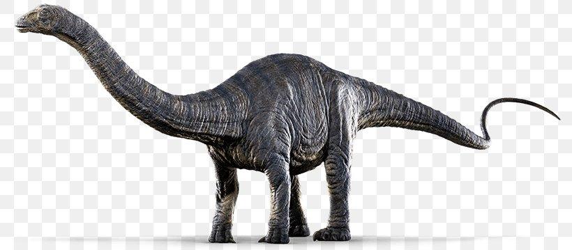 Jurassic World Evolution Apatosaurus Pachycephalosaurus Dinosaur Png 800x359px Jurassic World Evolution Animal Figure Apatosaurus Dinosaur Extinction De nuevo, otro dinosaurio al que ya habíamos visto, en jurassic park 3, pero que luce mucho mejor en jurassic world. jurassic world evolution apatosaurus