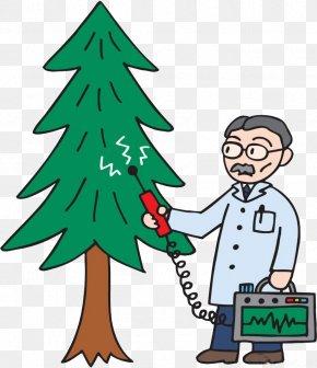 Christmas Tree Pick Up - Christmas Tree Cartoon Illustration PNG