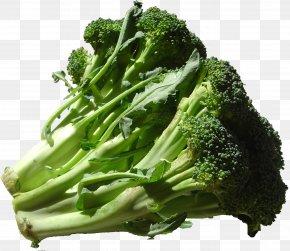 Broccoli - Organic Food Vegetable Emile Peloquin Fruits-Legumes Broccoli PNG
