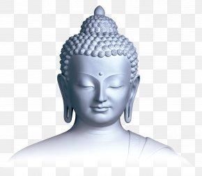 Buddhism Image - Gautama Buddha Buddhist Meditation Buddhism Bodhichitta Buddhist Centre PNG