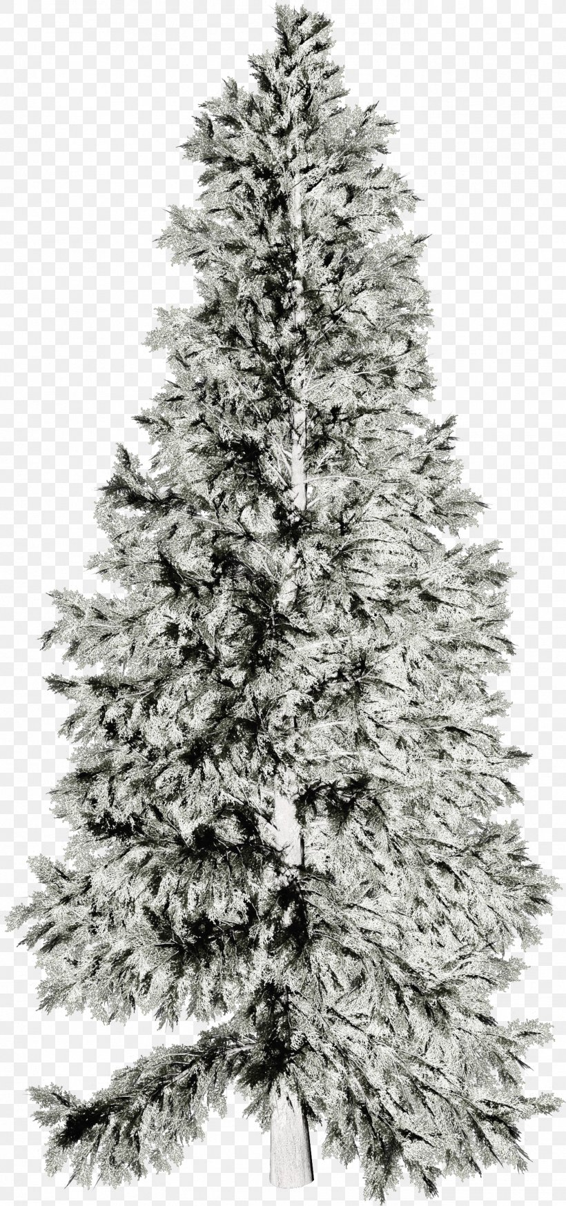 Wallpaper Png 1375x2932px Winter Black And White Christmas