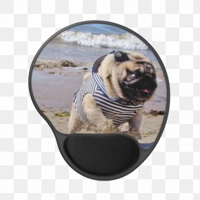 Pug Watercolor - Pug Dog Breed Toy Dog Snout PNG