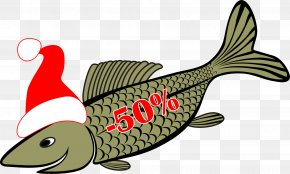 Fish Vector Material - Royalty-free Illustration PNG