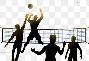 Volleyball - Beach Volleyball Clip Art Image Volleyball Net PNG