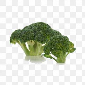Broccoli Buckle Free Image - Broccoli Vegetable PNG