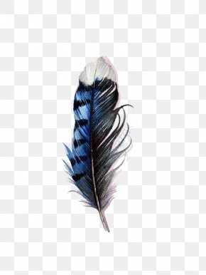 Blue Watercolor Feathers - Bird Tattoo Feather Blue Jay Watercolor Painting PNG