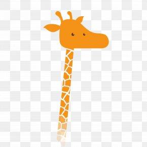 Giraffe - Northern Giraffe Film Director Cinema PNG