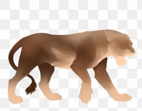 Pride Of Lions - Lion Dog Big Cat Fang PNG