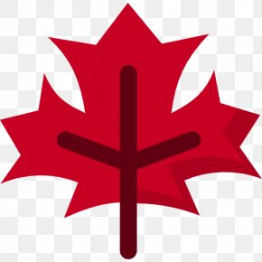 Multicolored Maple Leaf - Maple Leaf Canada Clip Art PNG