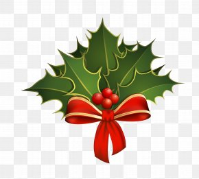 Christmas - Holly Stock Photography Clip Art PNG