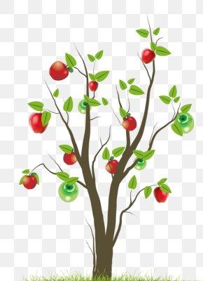 Apple Tree Cartoon Download - Tree Wall Decal Leaf Sticker PNG