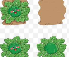 Broccoli - Broccoli Cauliflower PNG
