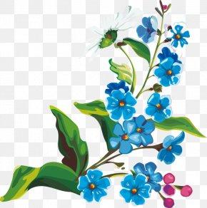 Flower - Flower Orchids PNG