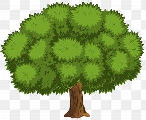 Large Tree Clip Art Image - Shrub Clip Art PNG