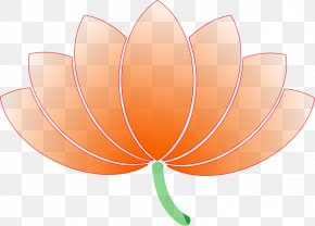 Asian Flower Cliparts - Petal Leaf Flowering Plant Wallpaper PNG