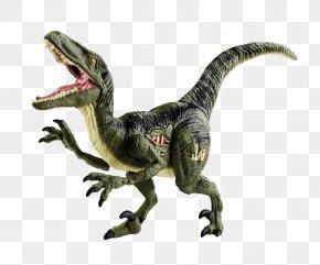Dinosaur - Velociraptor Tyrannosaurus Dinosaur Clip Art PNG