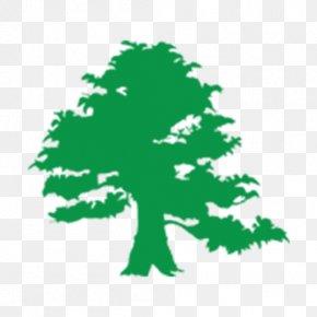 Saint Patrick's Day - Irish People Saint Patrick's Day Ireland Four-leaf Clover Toast PNG