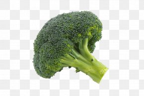 Broccoli Close-up Image - Broccoli Vegetable Drawing PNG
