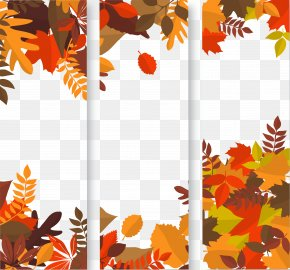 Yellow Maple Leaf Material - Autumn Web Banner Clip Art PNG