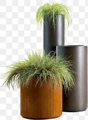 Green Plant Potted Free - Flowerpot De Castelli Vase Flower Box Plant PNG