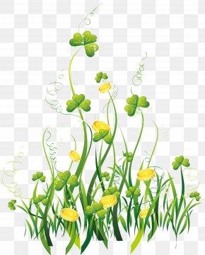 St Patrick Shamrocks With Gold Coins Decor PNG Clipart Picture - Saint Patrick's Day Shamrock Clip Art PNG