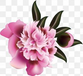 Flower Pattern Elements - Floral Design Flower Illustration PNG