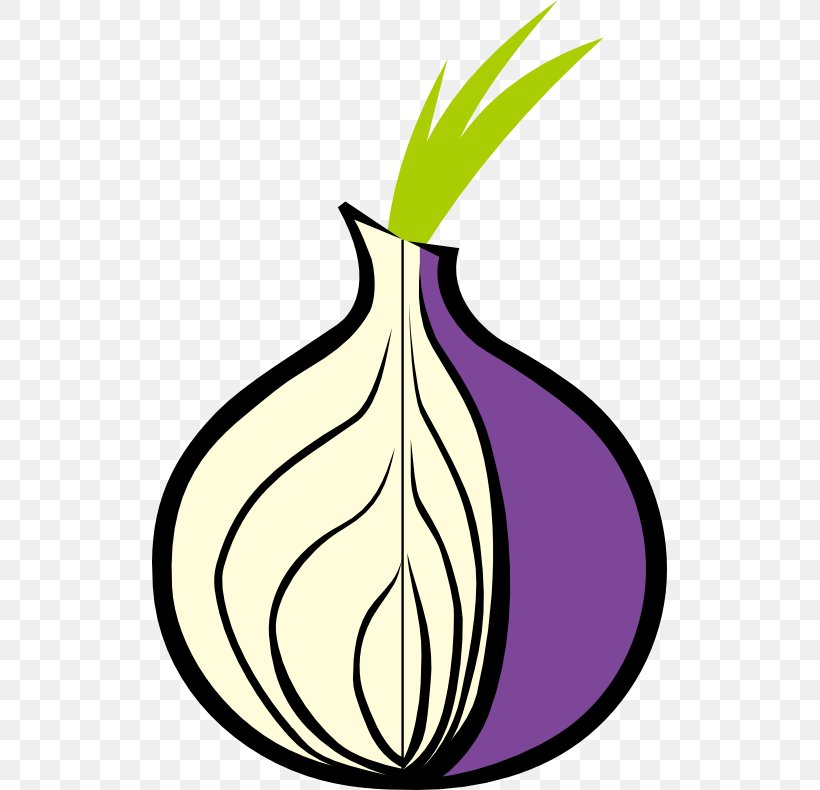 Tor .onion Onion Routing Web Browser Dark Web, PNG, 515x790px, Tor, Anonymity, Anonymous Web Browsing, Artwork, Computer Software Download Free