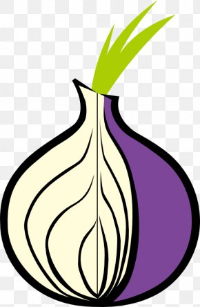 Onion - Tor .onion Onion Routing Web Browser Dark Web PNG