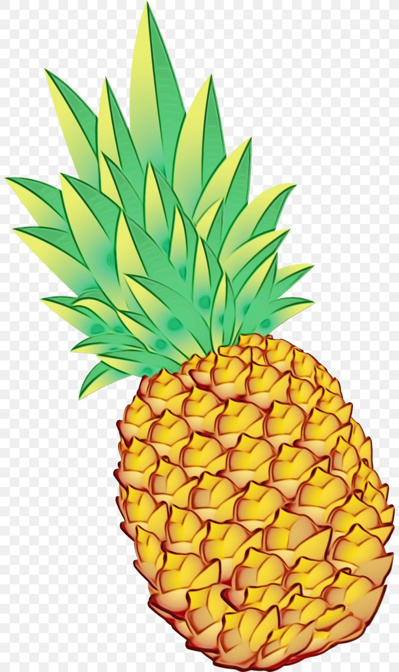 Clip Art Pineapple Drawing Watercolor Painting, PNG ...