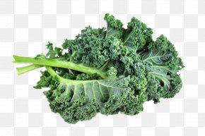 Kale - Broccoli Lacinato Kale Brussels Sprout Organic Food Leaf Vegetable PNG
