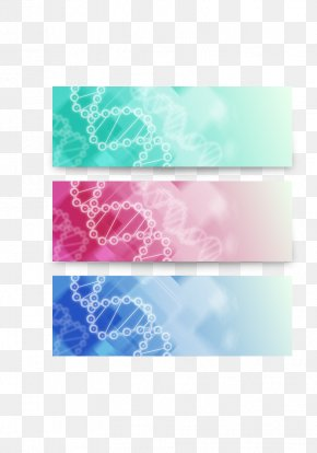 3 Color DNA Molecule Banner PNG