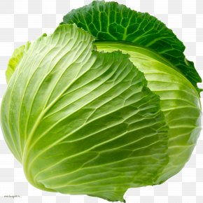 Cabbage Image - Cauliflower Red Cabbage White Cabbage Vegetable Savoy Cabbage PNG