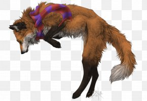 Dog - Dog Breed Red Fox Fur Snout PNG