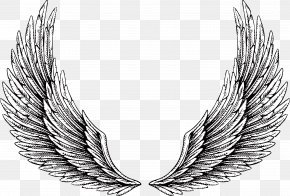Wing - Tattoo Wing Illustration PNG