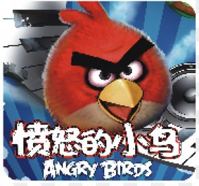 Angry Birds - Android Angry Birds Application Software PNG