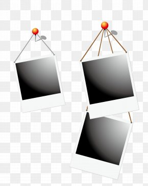 Vector Black And White Frame - Black And White Photographic Paper Photography PNG