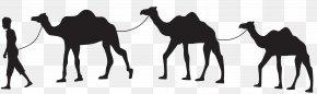 Camel Caravan Silhouette Clip Art - Camel Train Caravan Clip Art PNG