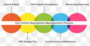Development Cycle - Reputation Management Marketing Business Process PNG