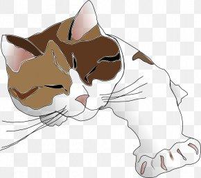 Lazy Cat - Persian Cat Siamese Cat Kitten Tiger Clip Art PNG